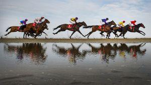 Скачки, останавливающие нации. Главные конные турниры мира