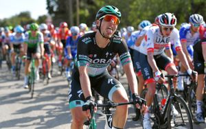 Австрийский велогонщик сошел с «Тур де Франс» после укуса пчелы в рот