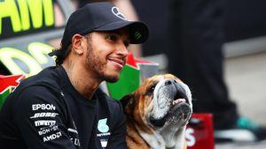 «Зато Шумахер на коленях не стоял». Что пишут болельщики о рекорде Хэмилтона по числу побед в Формуле-1