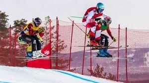 Красноярск не примет ЧМ-2025 по сноуборду и фристайлу из-за запрета CAS на проведение соревнований в России