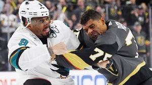 «Хоккей — спорт для белых, игрокам трудно говорить о проблемах черных». Расизм — главная тема июня в НХЛ