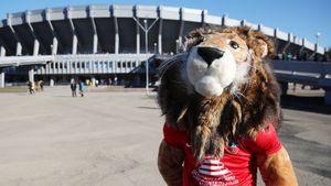 В матче «Енисей» — «СКА-Хабаровск» произошла драка. Видео броска из ММА на футбольном поле