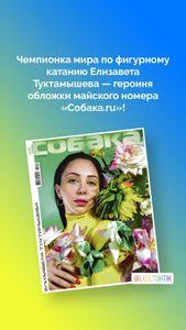 (sobaka_ru)