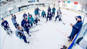 Команда-витрина уже три года без плей-офф. Поднимать «Сибирь» будут финны итренер-дебютант