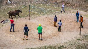 Белорусский футбол, любительский хоккей, дворовый теннис. На что ставить, когда спорт отменили из-за коронавируса?
