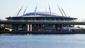 Жители Петербурга пожаловались на звуки устройств, отпугивающих бакланов со стадиона