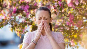 На что может быть аллергия в августе и как с ней бороться