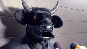 Тренер клуба НХЛ вышел к журналистам в маске быка. Он проиграл пари своей команде