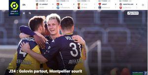 (www.ligue1.fr)