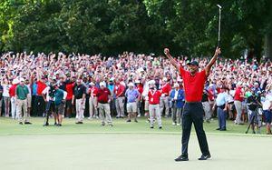 Сумасшедшая толпа едва не снесла гольфиста Тайгера Вудса. Такого вы не увидите даже на футболе