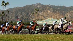 Ипподром Санта-Анита бьет рекорды по смертности лошадей