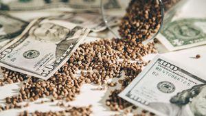 Прогнозы на нефть, курс доллара и пакет гречки. Финансовые ставки во времена коронавируса
