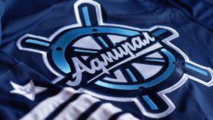 «Адмирал» примет участие в новом сезоне КХЛ