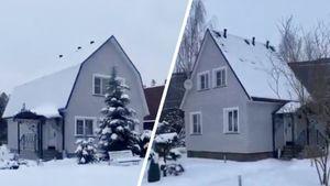 Плющенко показал настоящие дома Трусовой, Косторной и Липницкой