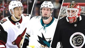 В Россию едет не только молодежь из АХЛ, но и игроки НХЛ. Среди новой четверки арендованных — «силовик» Любушкин