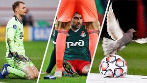 Нойер на коленях, травма Чорлуки, приключения голубя в Черкизово. «Локо» — «Бавария: фото