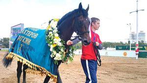 Семилетний чистокровный Центурион— лошадь года. ВМоскве прошел Кубок Шахтеров