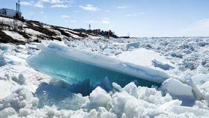 Самый северный турнир планеты: Енисей покрылся глыбами льда, а капитаны мужской и женской сборных встали в пару