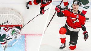 Знаменитый гол в плей-офф КХЛ. Шумаков исполнил сложнейший трюк, забив «Ак Барсу» из-за ворот: видео