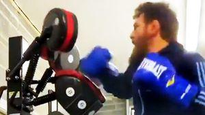 Макгрегор показал, как тренируется дома вовремя карантина из-за коронавируса: видео
