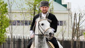 Три лошади Рамзана Кадырова пришли первыми наскачках вКазани