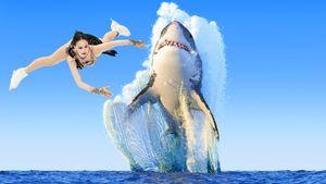 Уткин сравнил Загитову с красиво выпрыгнувшей из воды акулой: видео