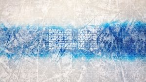 Альянс хоккейного разнообразия попросил у НХЛ 100 млн на борьбу с расизмом и изменить цвет синей линии на черный