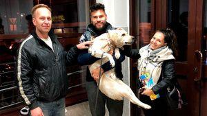 Туляки помогли защитнику «Арсенала» и его жене найти сбежавшего бездомного пса