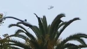 Вертолет Коби Брайанта засняли заполчаса докрушения: видео