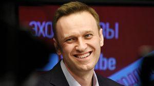 В Федерации бокса России оценили шансы Навального в бою с Плющенко: «Только болтать языком его преимущество»
