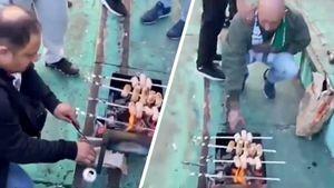 На стадионе во Львове болельщики пожарили сардельки на мангале во время матча. Видео