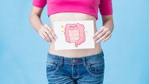 Микробиом кишечника значительно влияет на здоровье человека. Как его проверить и улучшить