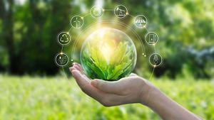 14 способов жить экологичнее