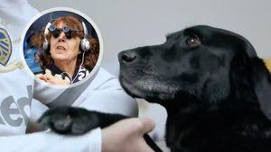 Милота недели. Собака-поводырь годами водила незрячую болельщицу наигры «Лидса»